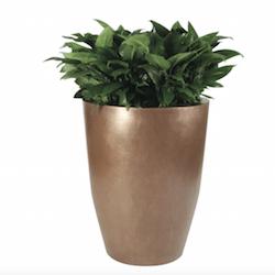 Carolina Fiberglass Planter