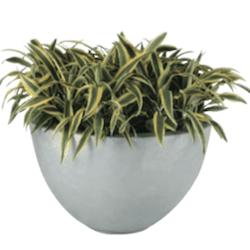 Equator Fiberglass Planter