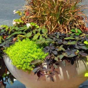 3 foot Round Concrete Deco Base Bowl Planter