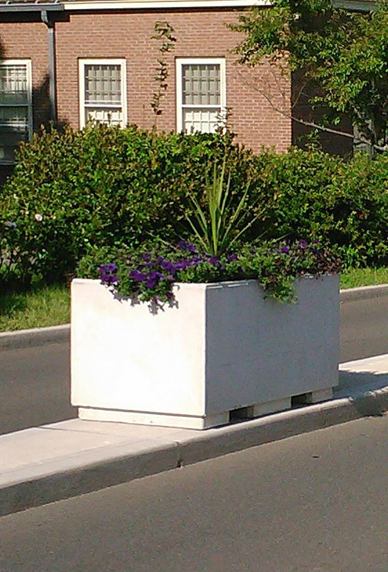 5' Rectangular Concrete Planter